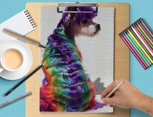 Акция на креативные стрижки, глиттер тату и креативное окрашивание.